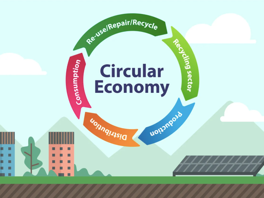 Decade of Action: Importance of Circular Economy
