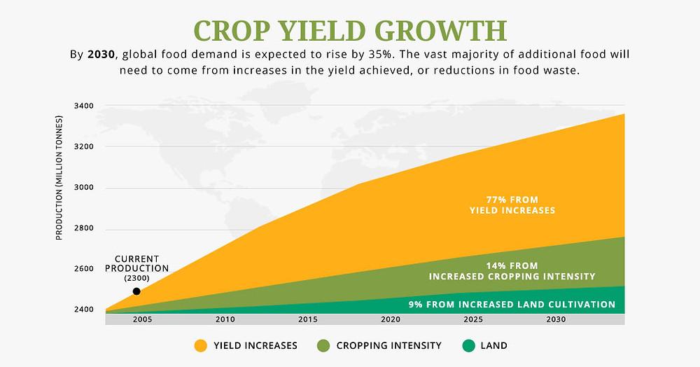 Crop Growth Yield UN SDG