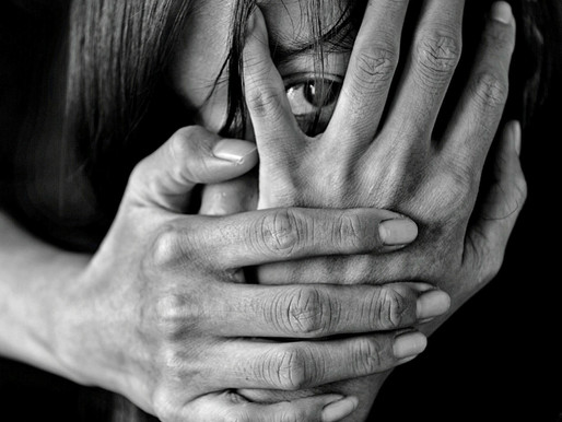 Domestic Violence: The Parallel Pandemic