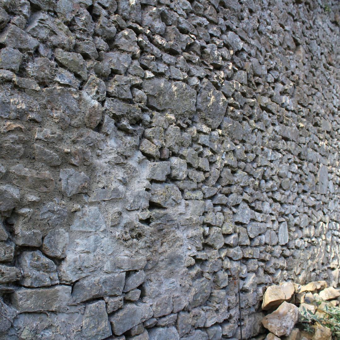 Burgage wall.jpg