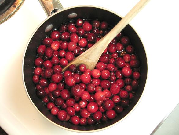 cranberries-1-1328705