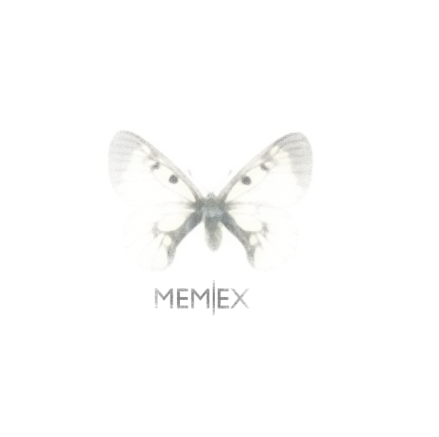 Butterfly With Memex