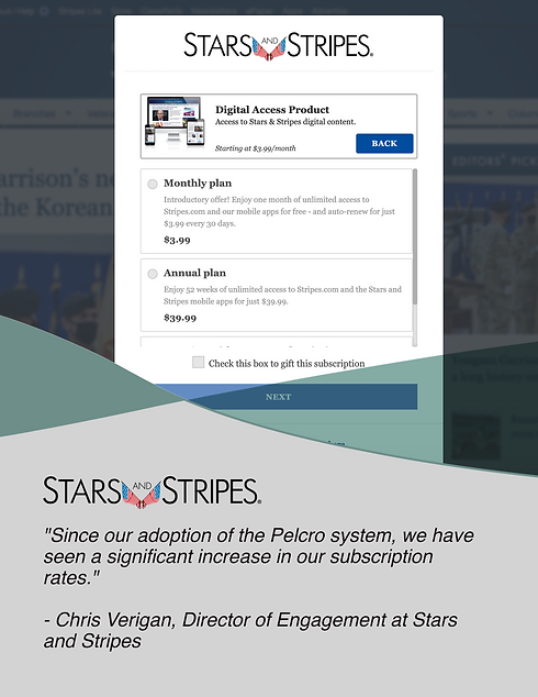 Stars&Stripes Customer Image v2.png