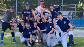 Majors A 2021 Champions!  Congratulations to the Yankees!