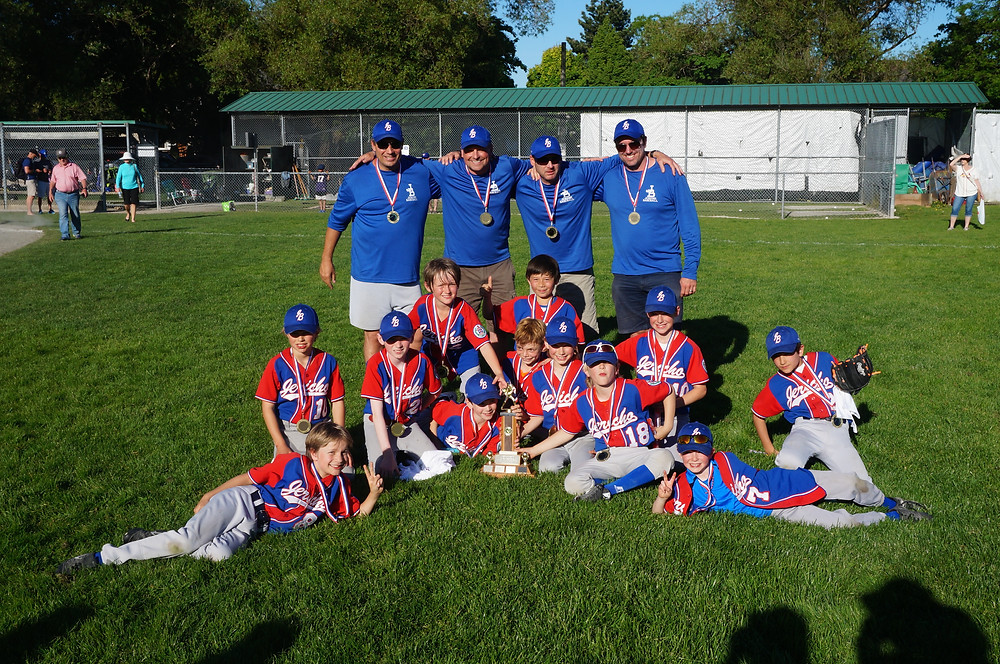 Jericho Little League Baseball Champions