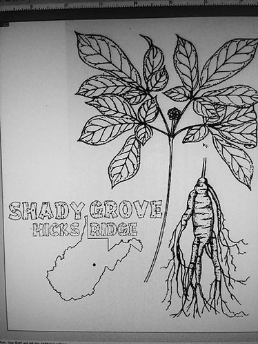 SHADY GROVE T-SHIRT