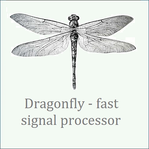 Dragonfly. Fast signal processor PCA with setup & analytical software.