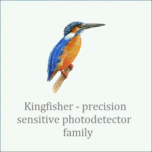 Kingfisher. Laboratory grade photonic measurement.