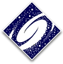 Space Services logo