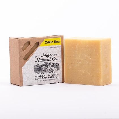 Citric Sea Soap