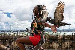 Pigeon Park / Old San Juan