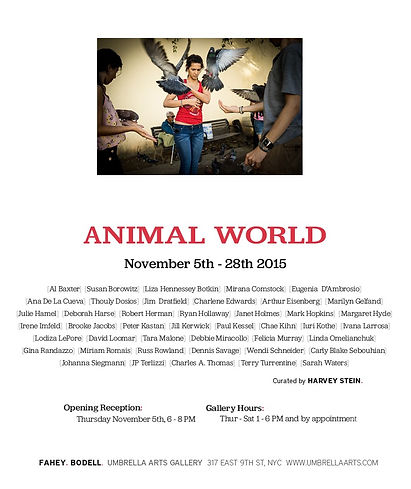 Animal World Umbrella Arts Gallery
