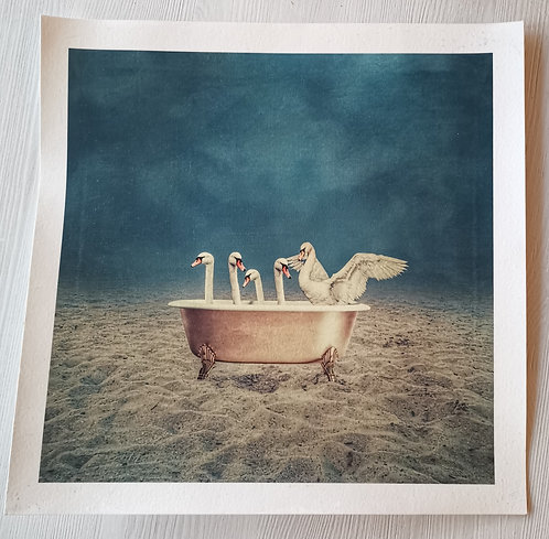 Swanlake - digitalprint