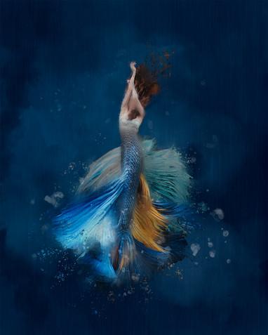 Mermaid stories I