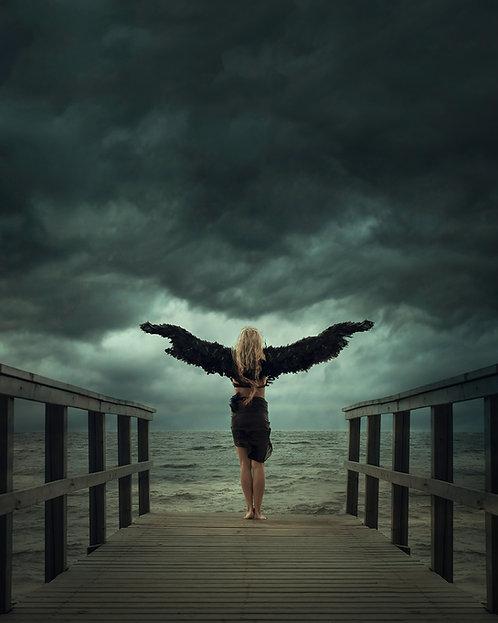 Angel - Alu/Plexi