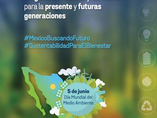 Exhorto de sociedad civil al gobierno de México en el marco del Día Mundial del Medio Ambiente