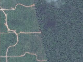 Uso de suelo y cambio climático: un panorama especial en el caso de Perú.