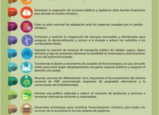 ¿Qué significa el triunfo de AMLO para la agenda climática de México?
