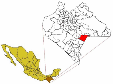 Figura 1:  Municipio Trinitaria