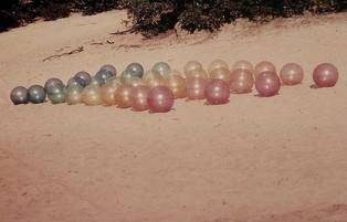 Meervoudig gekleurd bollenveld  Bedaf 19