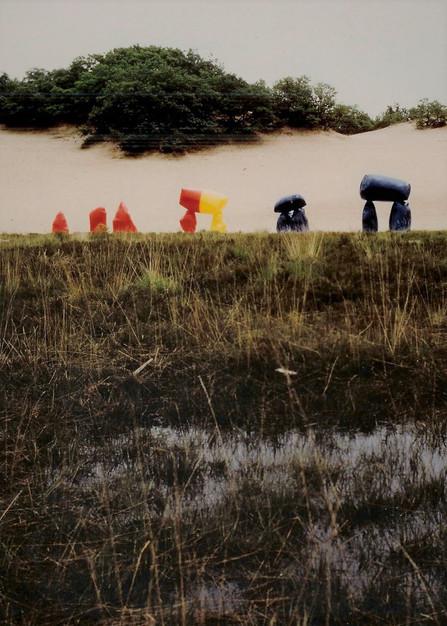 Meervoudig gekleurd hunnebed 1975