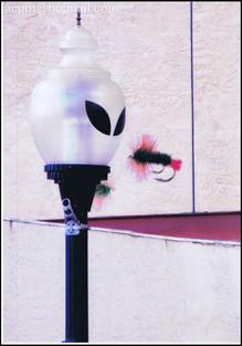 Roswell buitenaards