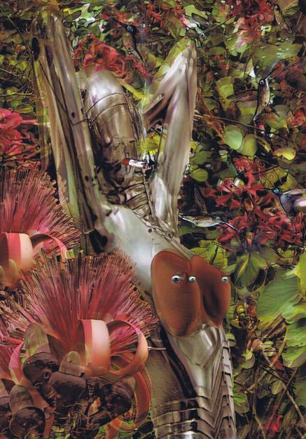Kolibrie bloem en piercing