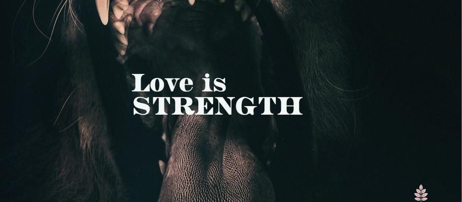 Love Is... No.11 #20IndicatorsofLove