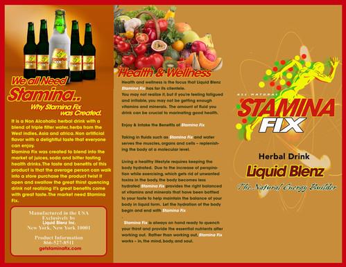 Stamina Fix Brochure.jpg