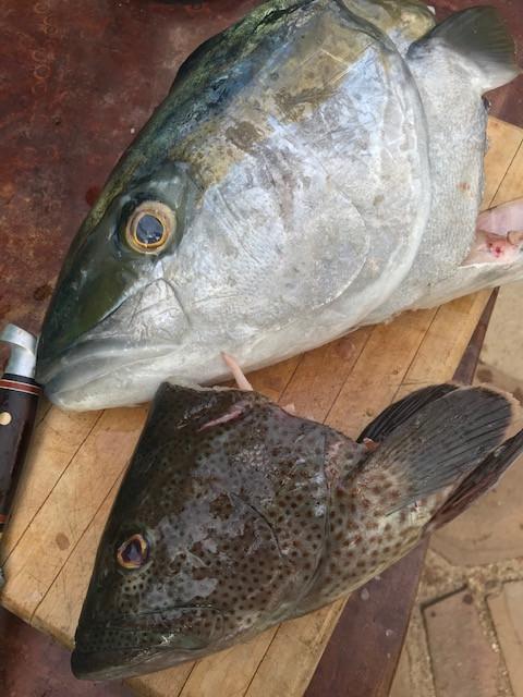 Chipotle Coconut Fish Head Soup