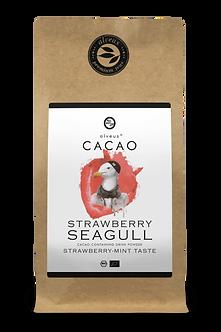 Cocoa - Strawberry Seagull