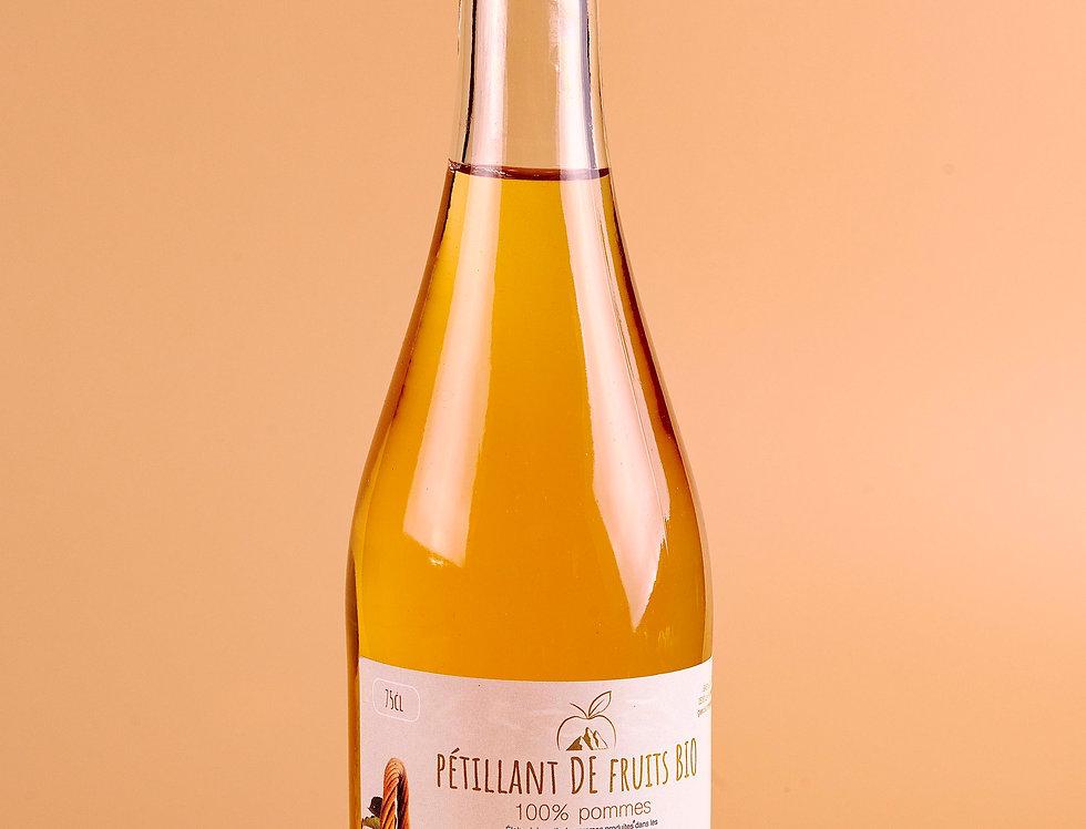 Pétillant de Fruits Bio - 100% Pommes - Sans Alcool - Domaine de Quint