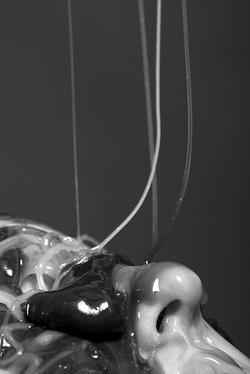 Metamorphose - 2009