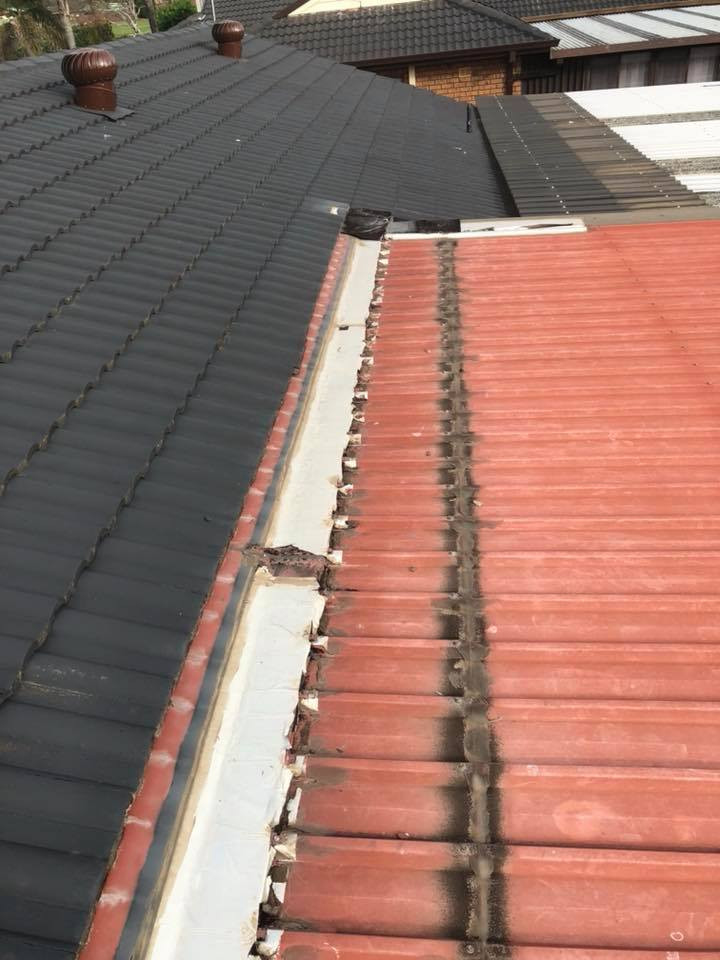 replace roof 3.jpg