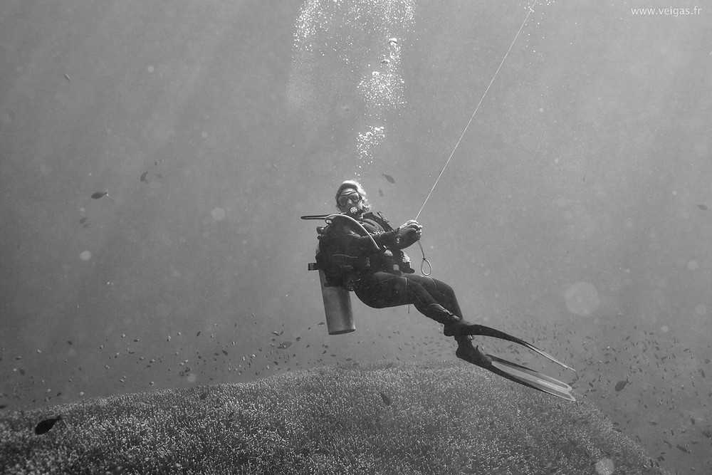 Diver with SMB in Nusa Penida Bali