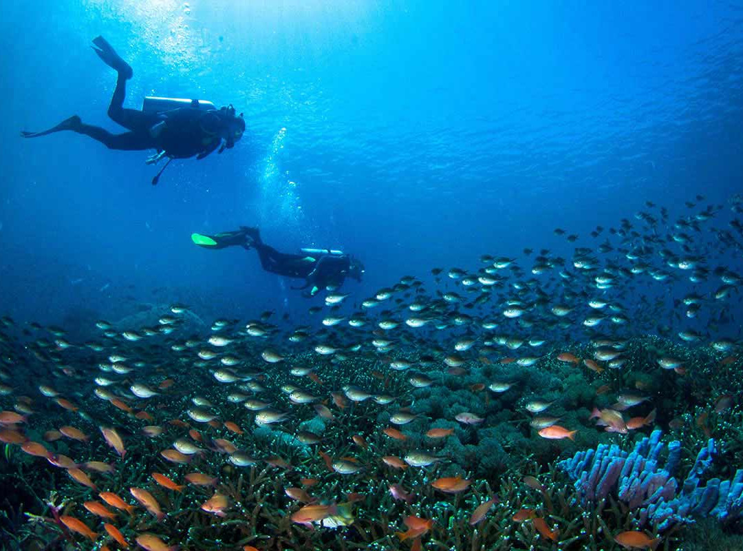 Divers in Nusa Penida