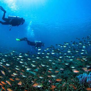 Divers in Nusa Penida