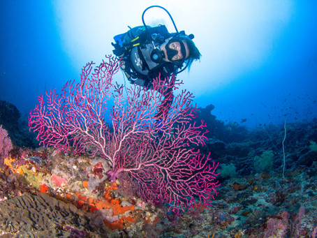 Why do your Divemaster training in Nusa Penida?
