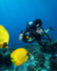 Underwater Photography_spec.jpg