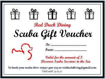 Red Duck Diving Gift Voucher.jpg