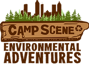 CampSceneLogo-color_edited.png