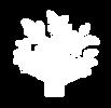 imaterra-simbolo-branco-png.png