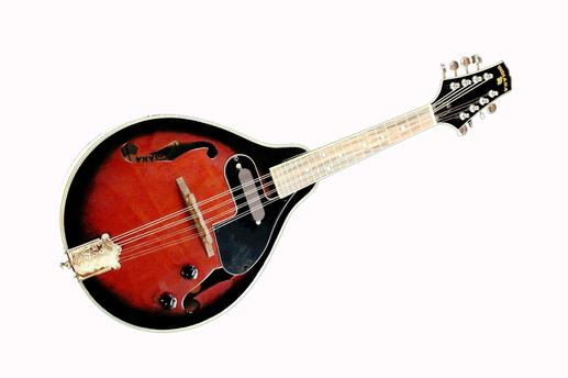 Meet a New Instrument...The Mandolin