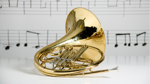 Meet a New Instrument...The French Horn