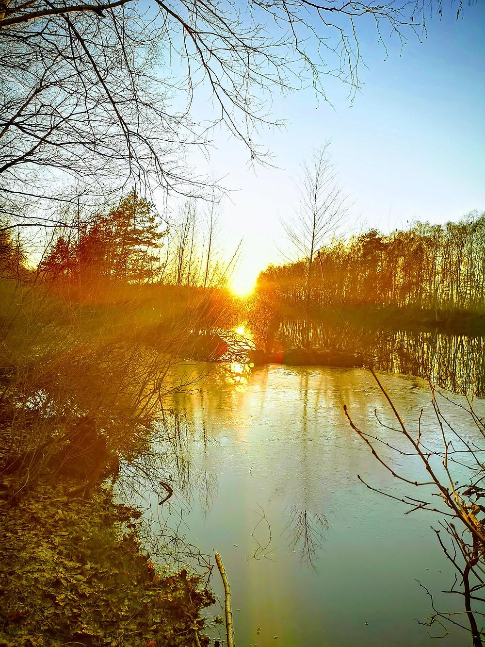 Sonnenuntergang an einem Wintertag am See