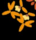 WBI_Flower_rechts.png