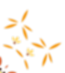 WBI_Flower_links.png