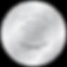SilverFalchionAwardWinner_Web-300x300.pn