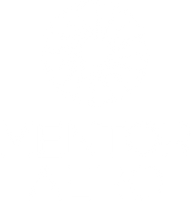Mentor Aero