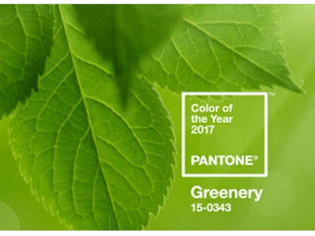 PANTONE's Color of the Year: Greenery